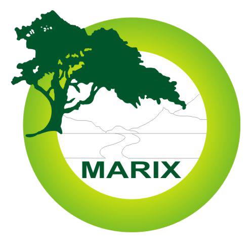 Marix